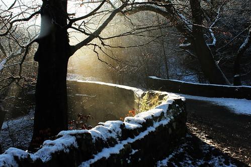 Snow Melt 22418