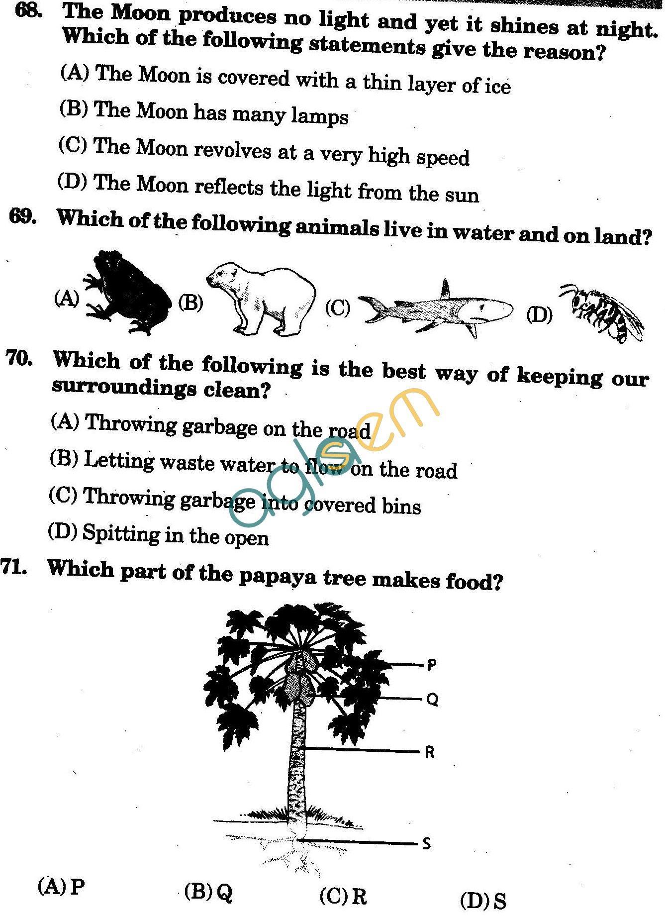 NSTSE 2010 Class III Question Paper with Answers - Science