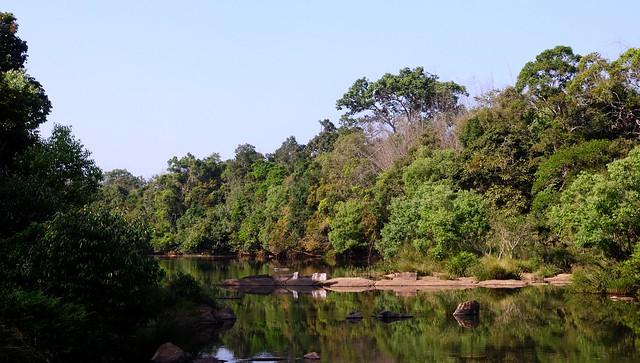 Wayanad In Kerala