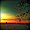 Good #Morning | #welovehh #hamburg #alster #igershamburg #bestoftheday #all_shots #nature #snapseed #camera+ #jj #jj_forum #sky