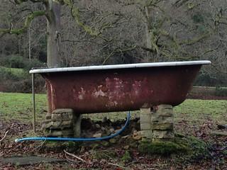 Bath in field