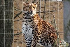 Tierisches Bilderbuch Tierpark Hellabrunn