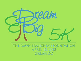 Dream_Big_5k 2013 logo