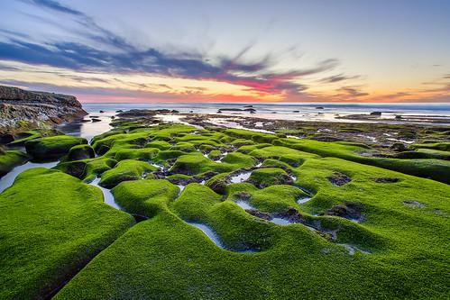 ocean sunset green beach pool rock canon coast moss pacific sandiego dusk tide rocky lajolla pools canon5d tidepools tidepool hdr canon5dmarkiii 5d3 5dmark3