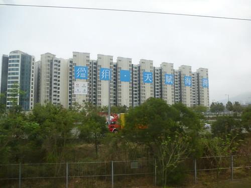 Shenzhen13 (10)