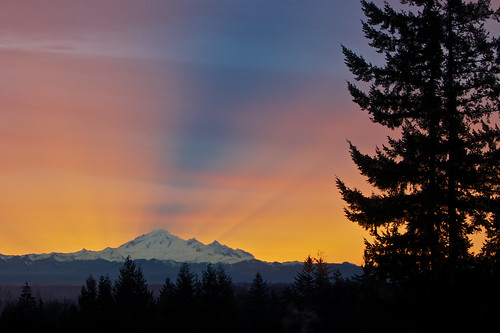 sun canada tree sunrise bc view rays bedroomwindow mtbaker
