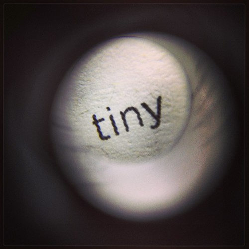 Tiny (51/365) by elawgrrl