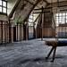 Ecole Labyrinth