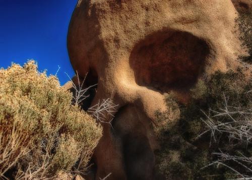 nationalpark nikon desert joshuatree d200 hdr skullrock hcs mynewbff clichesaturday hbmike2000 iwonderhowheblowshisnose
