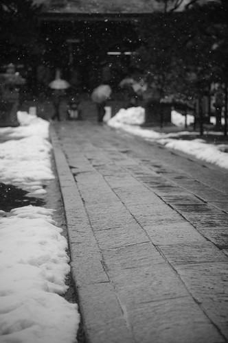 approach snow falling