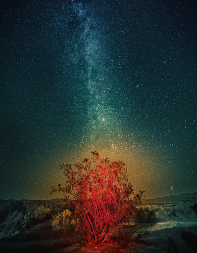 The Milky Way over the Burning Bush