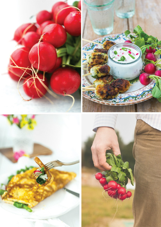 Luscious: Online Magazine for Foodies