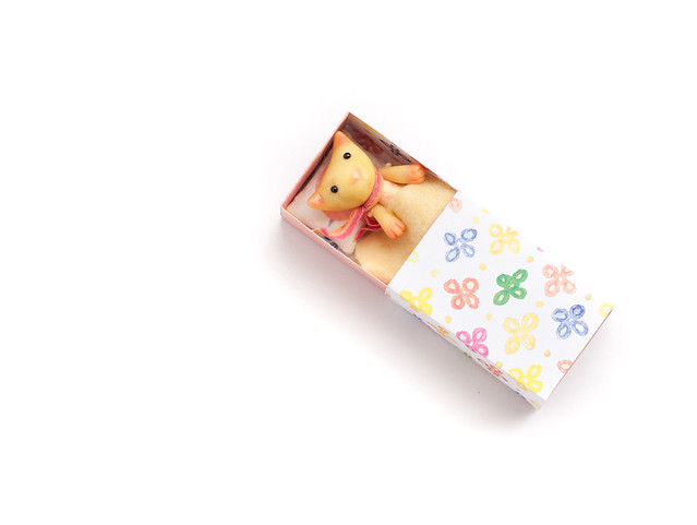 pastel cat in a matchbox