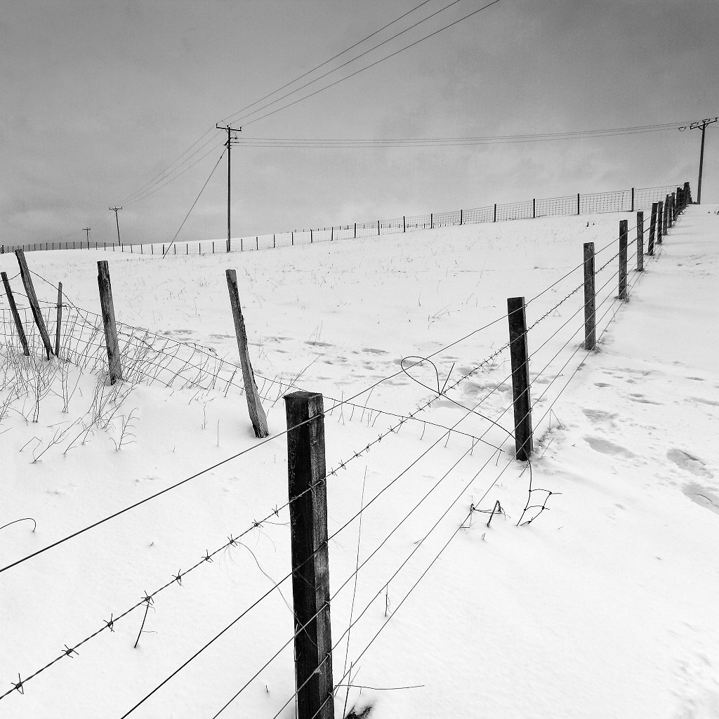 Fences and Telegraph Poles