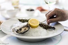 high key oysters