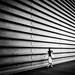 Long Wall by marco ferrarin