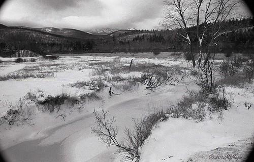 winter blackandwhite film 35mm hc110 adirondacks hp5 ilford canonae1p matrix2875