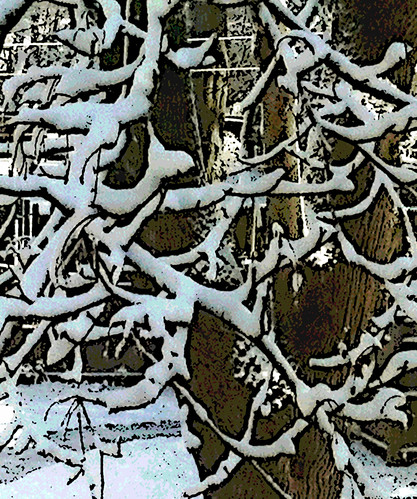 Snow and Tree Branches (Digital Woodcut) by randubnick