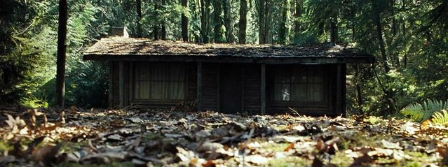 A cabin, in the woods