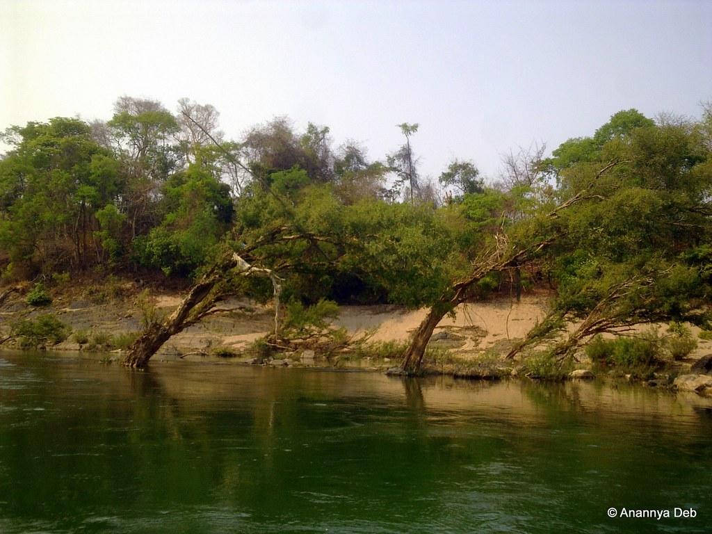 Mekong river bank, southern Laos, April 2011