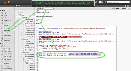 Screenshot showing how to - Add Google Site Verification Code to TYPO3 C.M.S. as Meta Tag 2013-02-0.