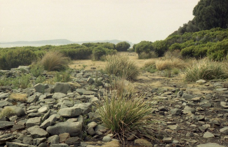 Tasmania Bruny Island