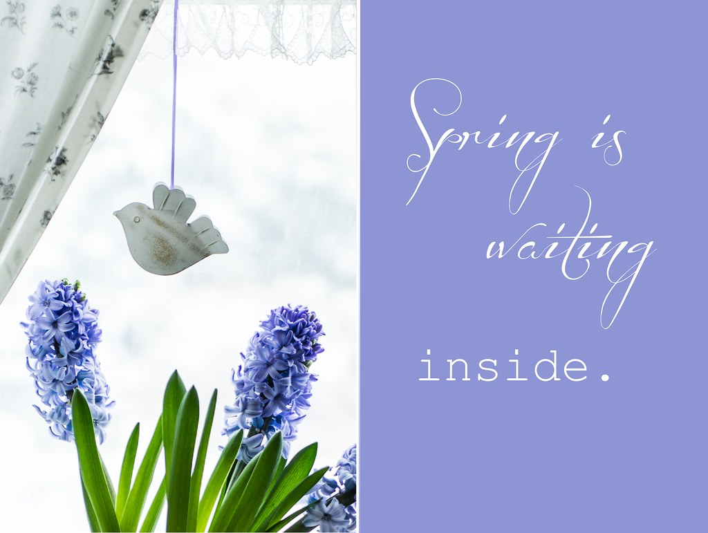 collage_spring_inside