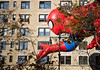 Spiderman Float by S.M. Nikfarjam