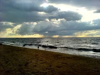 صورة Мелуджи пляж Юрмала. sea sky beach water clouds balticsea latvia riga jurmala latvija