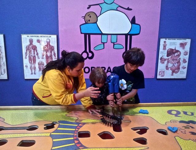 learning about the human body - kids museums
