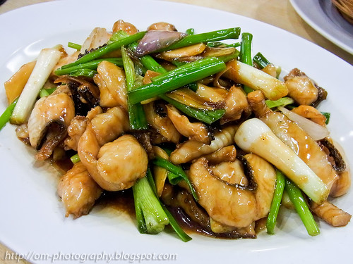 stir fried snakehead fish fillet with spring onions R0022053 copy