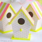 Neon & pastel bird houses