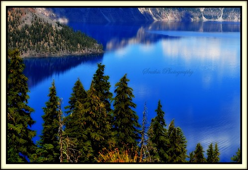 blue trees usa lake reflection water beautiful pine clouds oregon nikon crater worlds lovely dslr clearest d5000 world'sclearestwater craterlakeinoregon