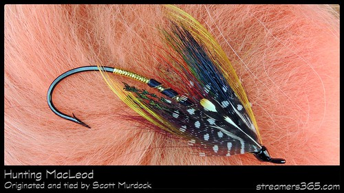 21 Hunting MacLeod by Scott Murdock