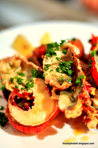 lobster14