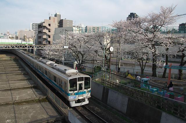 春の東京鉄道風景 小田急線