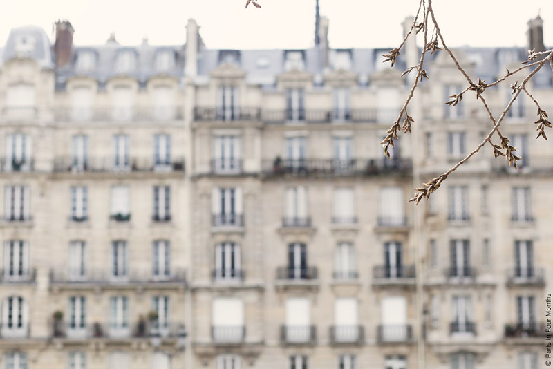 Gorgeous Parisian Architecture