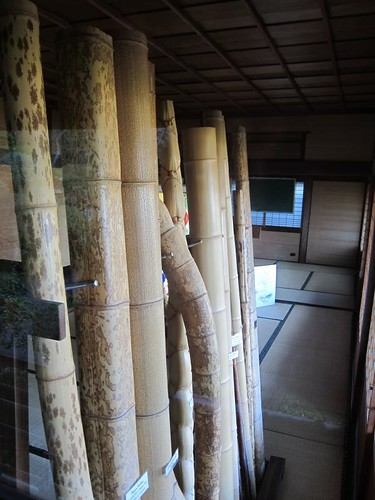 Hakone Japanese Gardens, Saratoga, CA, bamboo IMG_2383