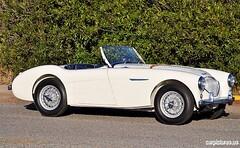 automobile, vehicle, austin-healey 100, antique car, classic car, vintage car, land vehicle, sports car,