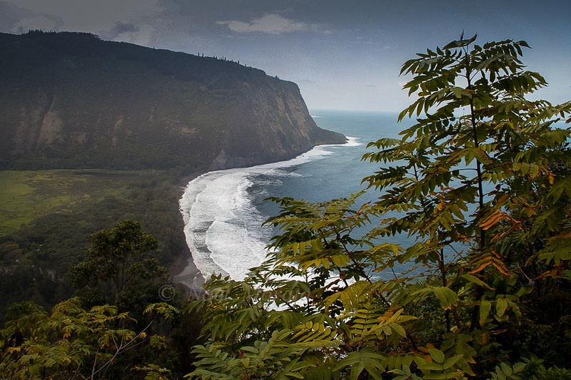 Waipio Valley, upper valley view