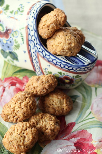 kruidnootjes-dutch speculoos