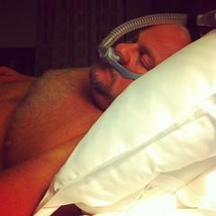 """#bearphotoaday - 01/21 - """"i don't sleep, i #dream"""""""