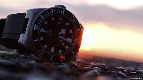 Tudor Pelagos Diver Watch  (2)