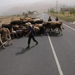 Tajikistan: transport