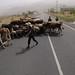 38236-022: Dushanbe-Kyrgyz Border Road Rehabilitation Project