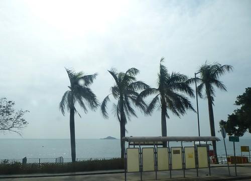 HK13-Lantau1-Route (13)