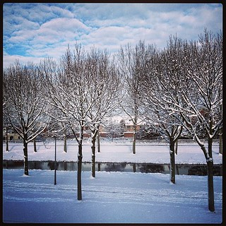 Almere 10-02-2013