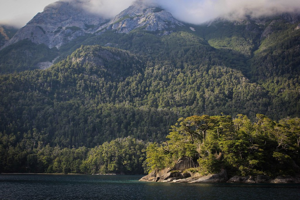 Extensive, native lenga forrests on the mountains bordering the fjord-like Nahuel Huapi lake, Argentine Patagonia. From the ferry-ride towards the core of the national park, from which we started a 2-week double trans Andean trek into Chile and back into Argentina.