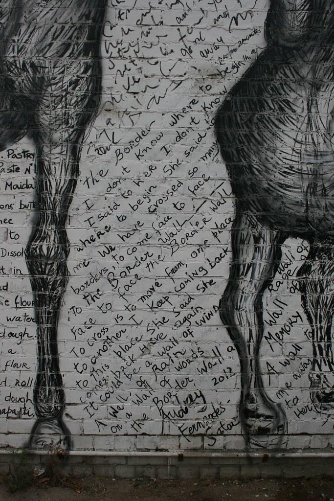 horses 05