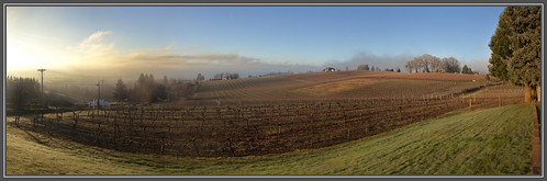 panorama breakfast oregon sunrise canon is vineyard bed wine dundee mark country orchard hills ii 5d farms mm ef 24105